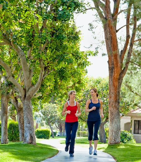 Two mature women jogging in a park : Stock Photo