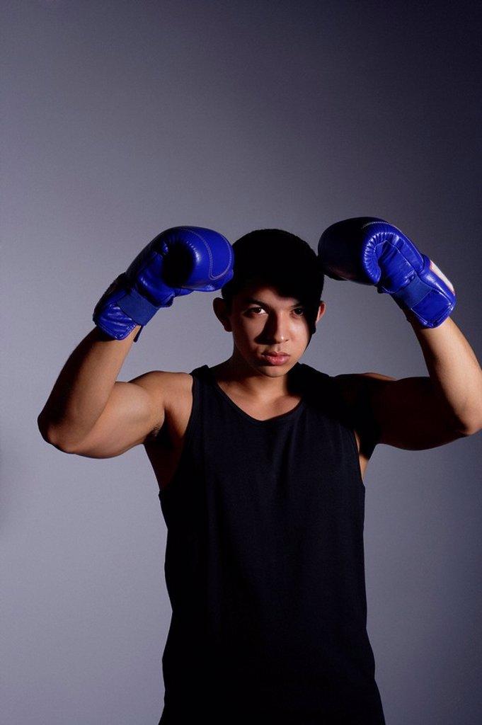 Stock Photo: 4078R-1262 Boxer
