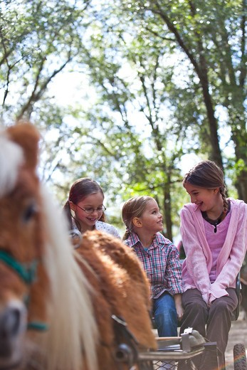 Children riding in a pony cart at a petting zoo : Stock Photo