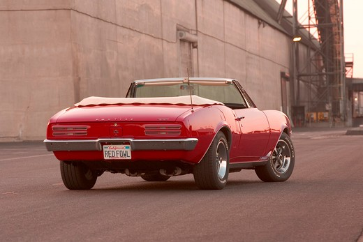 1967 Pontiac Firebird Convertible : Stock Photo