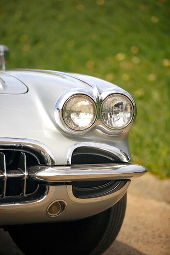 1959 Chevrolet Chevy Corvette : Stock Photo