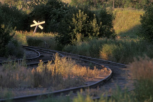 Stock Photo: 4093R-2429 tracks crossing curve grass nostalgia street