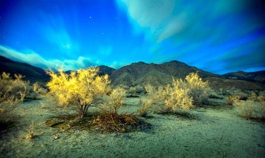 desert view at night with a long exposure : Stock Photo