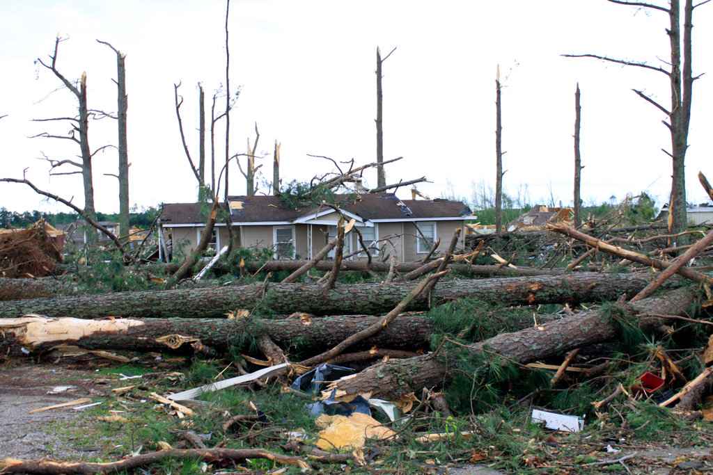 Homes and trees destroyed by storms, Limestone County, Alabama, USA : Stock Photo