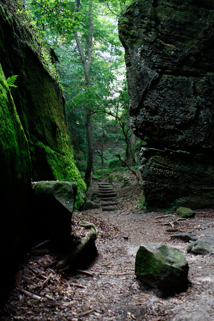 Stock Photo: 4095-156 Path between the sandstone walls of a canyon, Dismals Canyon, Franklin County, Alabama, USA