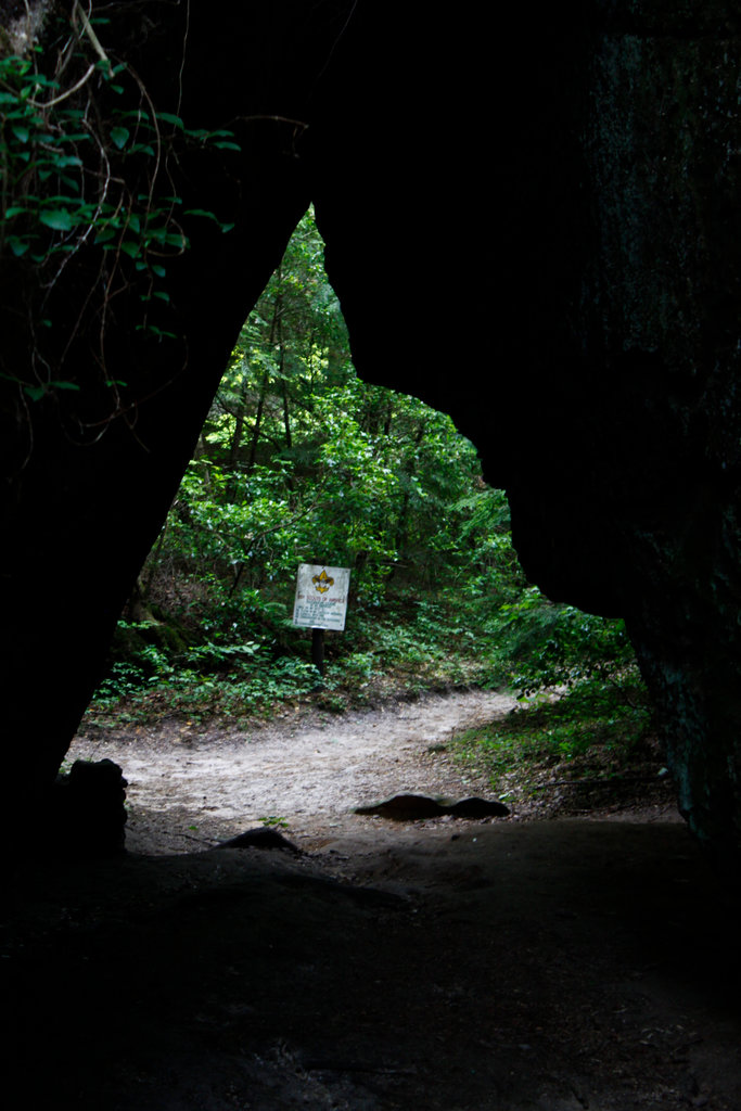 Sign beyond a space through joining walls of a canyon, Dismals Canyon, Franklin County, Alabama, USA : Stock Photo