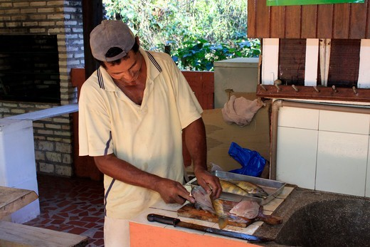 Stock Photo: 4095-209 Brazil, Man filleting fish