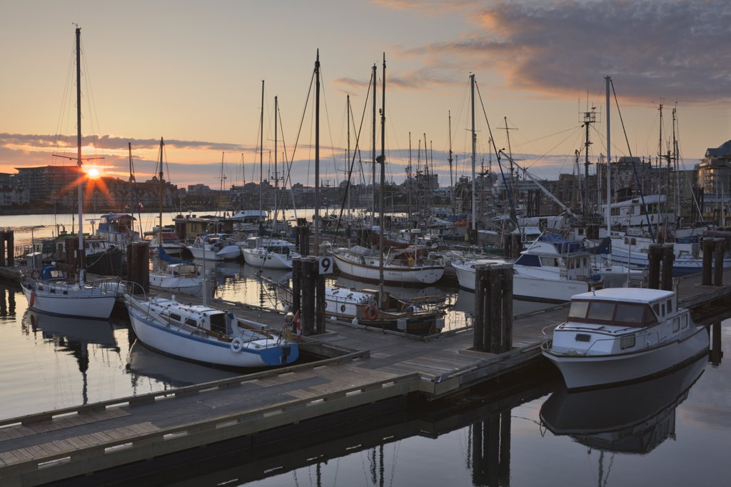 Stock Photo: 4097-1568 Boats docked at a harbor, Inner Harbor, Victoria, British Columbia, Canada