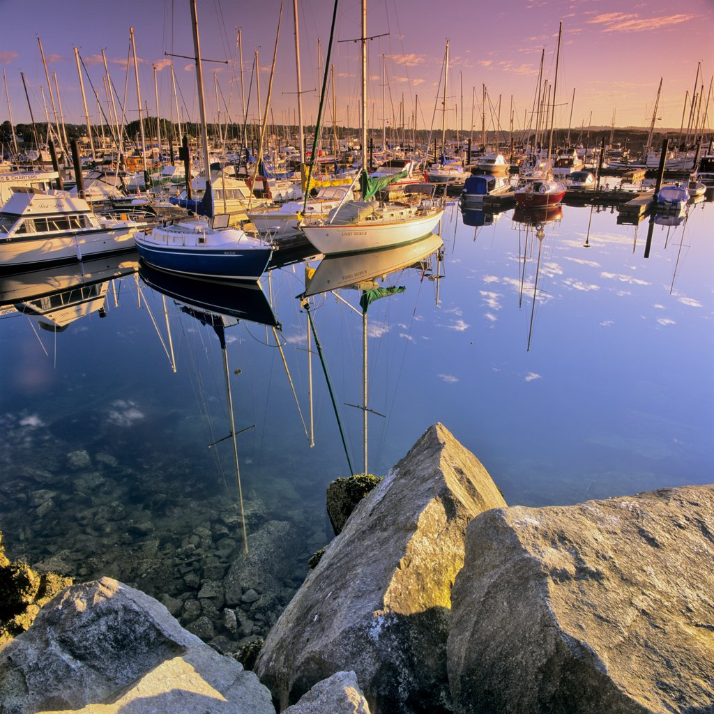 Stock Photo: 4097-191 Boats in the sea, Oak Bay Marina, Victoria, Vancouver Island, British Columbia, Canada