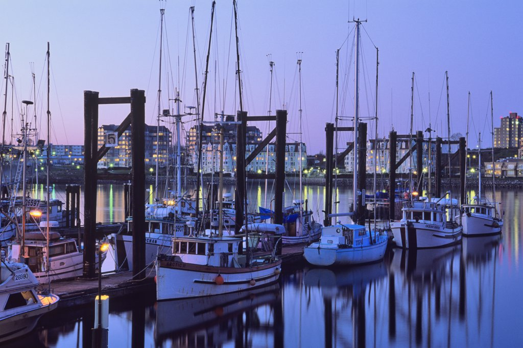 Stock Photo: 4097-275 Fishing boats docked at a harbor, Victoria, Vancouver Island, British Columbia, Canada
