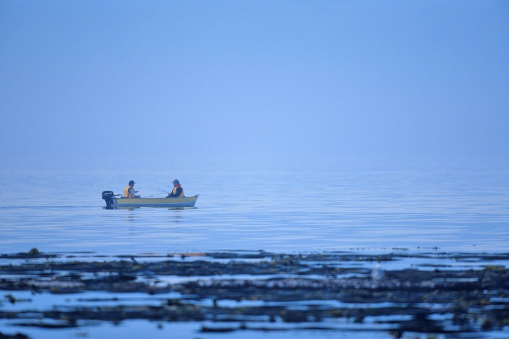 People fishing in the sea, Victoria, Vancouver Island, British Columbia, Canada : Stock Photo