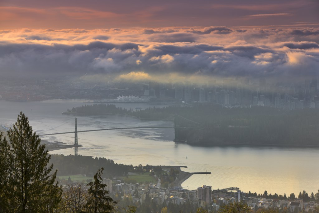 Canada, British Columbia, Vancouver, View of Lions Gate Bridge from Stanley Park at dusk : Stock Photo