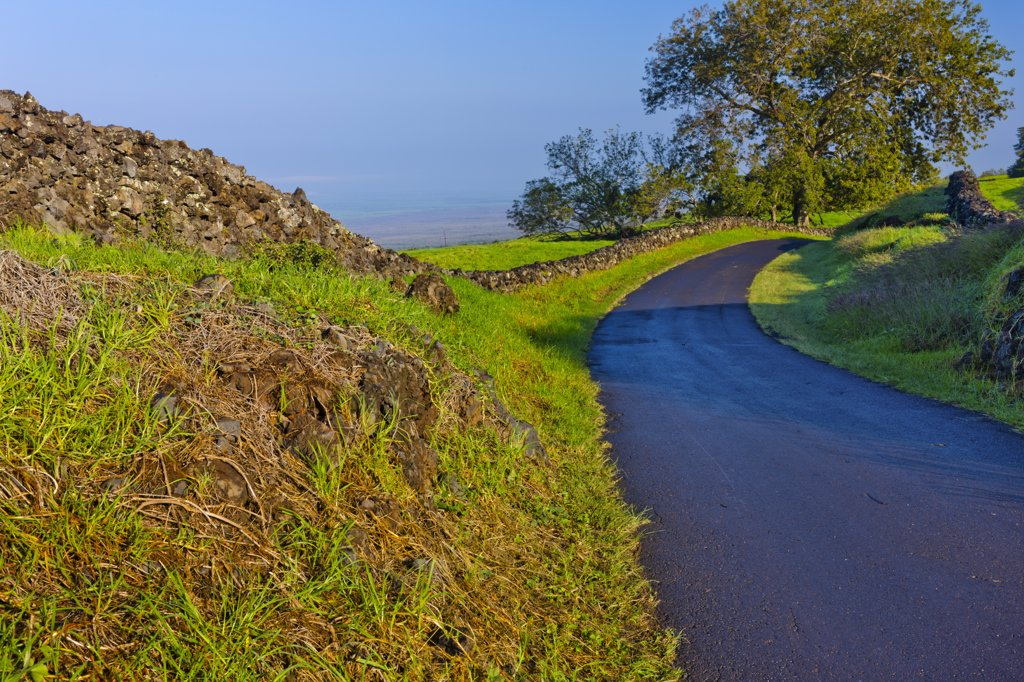 Stock Photo: 4097-3383 Road passing through a landscape, Maui, Hawaii, USA