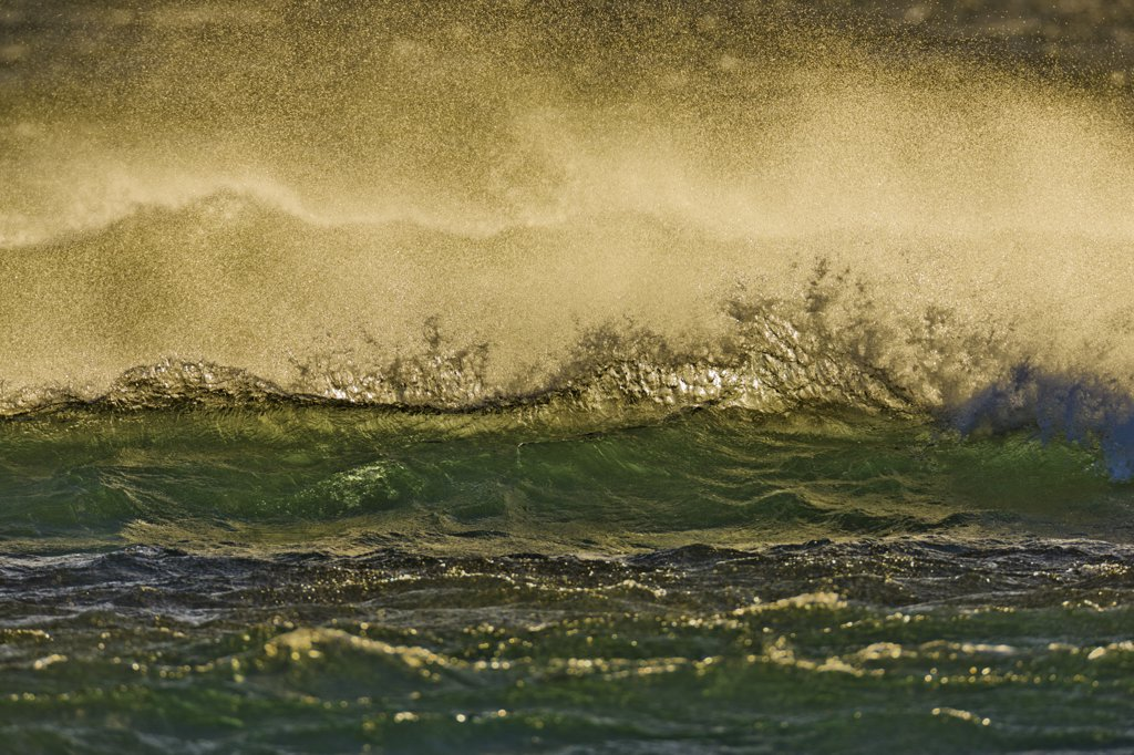 Stock Photo: 4097-3462 Waves breaking in the ocean, Maui, Hawaii, USA