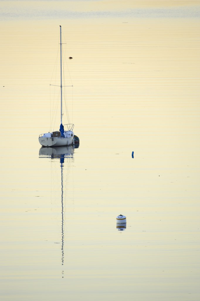 Stock Photo: 4097-354 Sailboat in the sea, Royal Victoria Yacht Club, Victoria, Vancouver Island, British Columbia, Canada