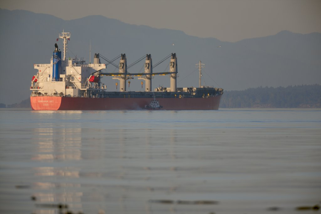 Stock Photo: 4097-377 Container ship in the sea, Olympic Mountains, Strait Of Georgia, Victoria, Vancouver Island, British Columbia, Canada