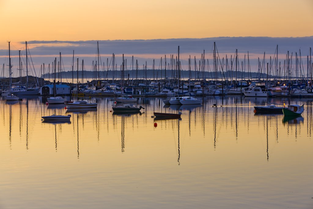 Canada, British Columbia, Victoria, sailing boats floating on water at sunrise : Stock Photo