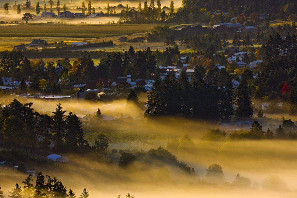 Canada, British Columbia, Saanich Penisula, rural scene in fog : Stock Photo