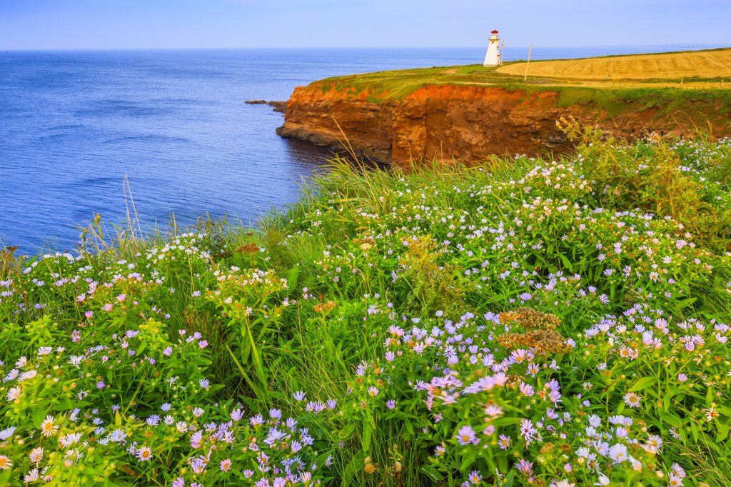 Stock Photo: 4097-4074 Lighthouse on the coast, Cape Tryon Light, Prince Edward Island, Canada
