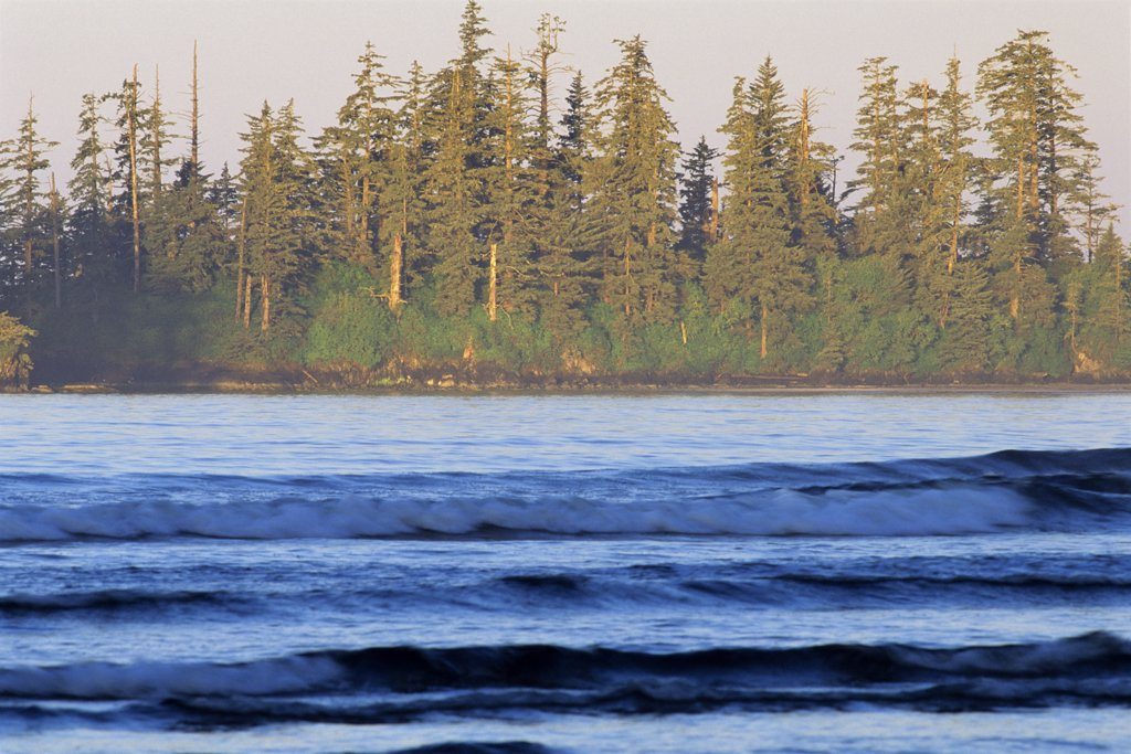 Waves in the ocean, Long Beach, Pacific Rim National Park Reserve, Vancouver Island, British Columbia, Canada : Stock Photo