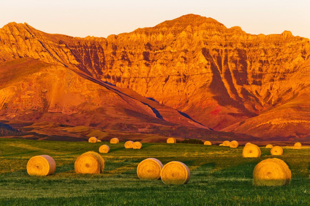 Canada, Alberta, Hay bails on field with mountains in background : Stock Photo