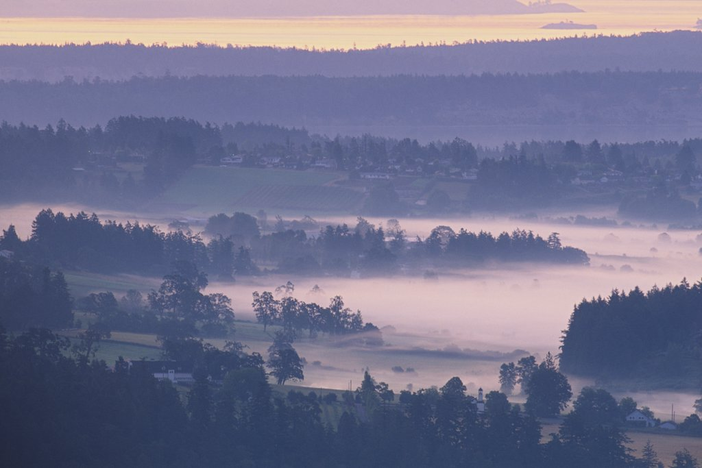 Farm covered with fog, Saanich Peninsula, Vancouver Island, British Columbia, Canada : Stock Photo