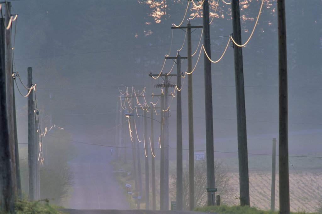Stock Photo: 4097-877 Electricity pylons along a road, Vancouver Island, British Columbia, Canada