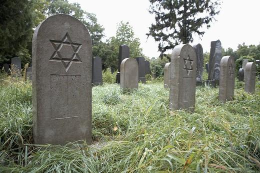 Star of David engraved on tombstones, Zentralfriedhof, Vienna, Austria : Stock Photo