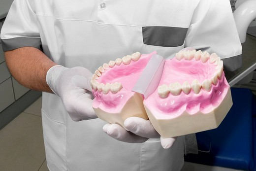 Stock Photo: 4105-2020 Dentist holding a set of dentures