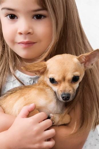 Girl carrying a dog in a veterinary hospital : Stock Photo