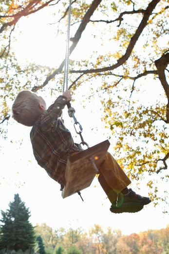 Stock Photo: 4113R-160 Boy on swing