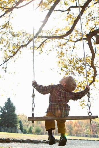 Stock Photo: 4113R-161 Rear view of boy on swing