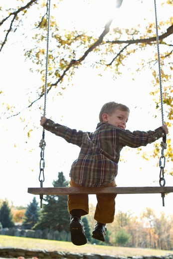 Rear view of boy on swing : Stock Photo