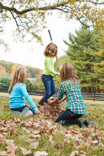 Girls playing with Autumn leaves in field : Stock Photo