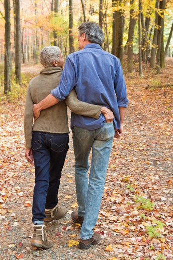 Stock Photo: 4113R-186D Rear view of mature couple walking on Autumn forest track
