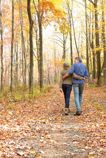 Rear view of mature couple walking on Autumn forest track : Stock Photo