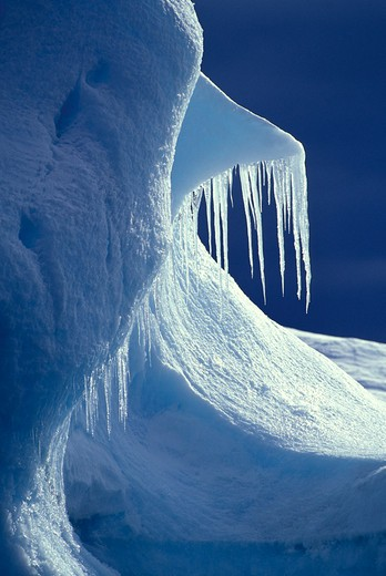 Glistening icicles hanging off an iceberg, Antarctica. : Stock Photo