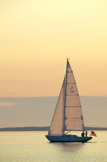 A Sparkman & Stephens designed Morris 36 sailing under the late afternoon sun, Maine, USA : Stock Photo