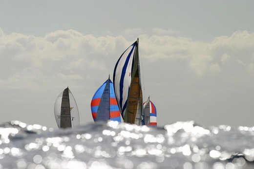 Sails of yachts competing in the 2003 ARC (Atlantic Rally for Cruisers), Las Palmas, Gran Canaria. : Stock Photo