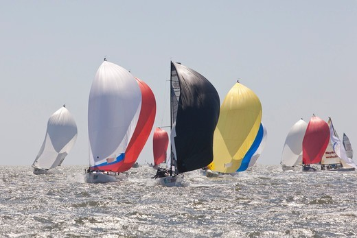 Stock Photo: 4115-4100 Fleet racing under spinnaker at Charleston Race Week, South Carolina, USA, April 2011.