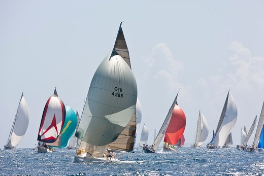 Stock Photo: 4115-4154 Wild at Heart' leading fleet under spinnaker during the Heineken Regatta, St Martin, Caribbean, March 2011.