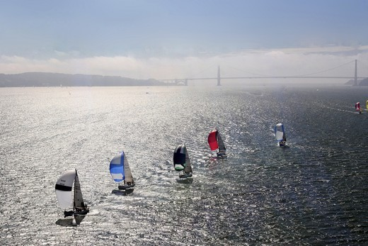 Stock Photo: 4115-487 Fleet of yachts with spinnakers, and Bridge in the background. San Francisco to Vallejo Race, San Francisco Bay, California. USA, May 2006.