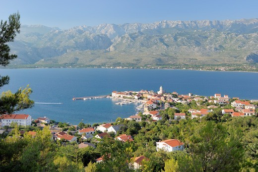 Overview of Vinjerac fishing village and harbour with Pine trees (Pinus sp.) in the foreground and the karst limestone Velebit mountain range of the Dinaric Alps in the background, Zadar province, Croatia, July 2010. : Stock Photo