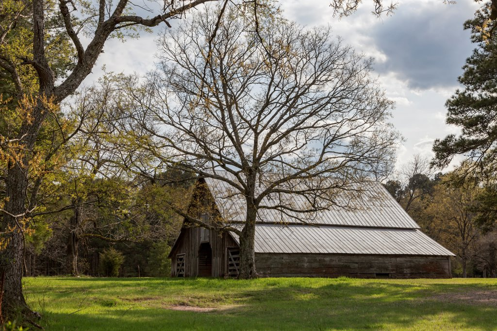 Stock Photo: 4116-1218 USA, Arkansas, Bearden, Old barn
