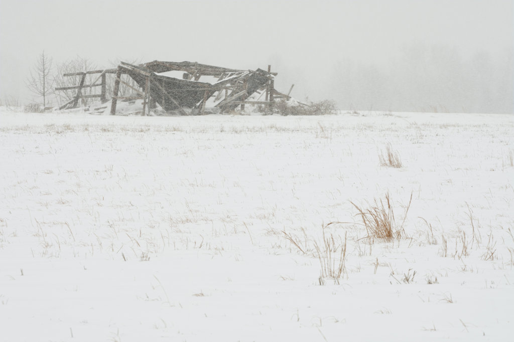 Abandoned farm buildings during blizzard, Arkansas, USA : Stock Photo