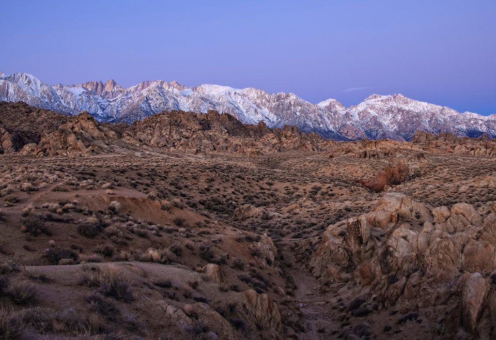 Stock Photo: 4116-621 USA, California, Alabama Hills at dawn