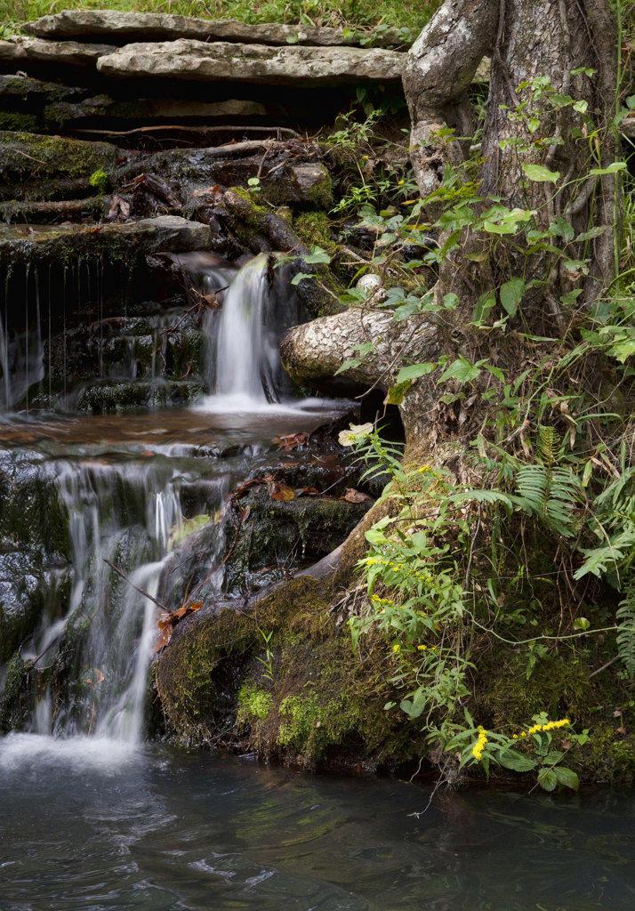 Stock Photo: 4116-680 USA, Arkansas, Heber Springs, Collins Creek