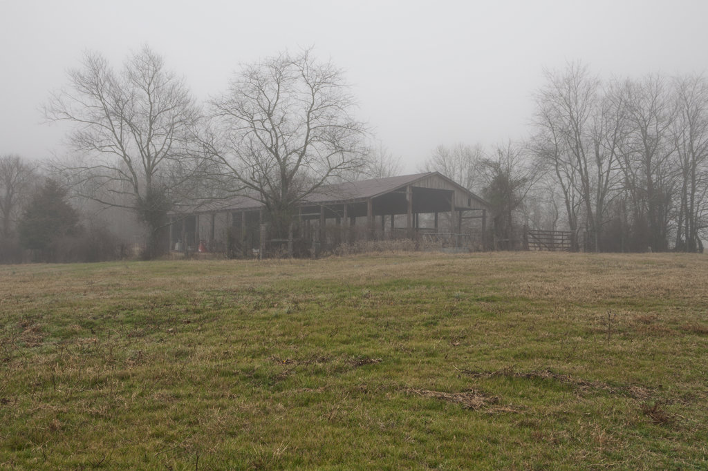 Old pole barn in a foggy field, Arkansas, USA : Stock Photo