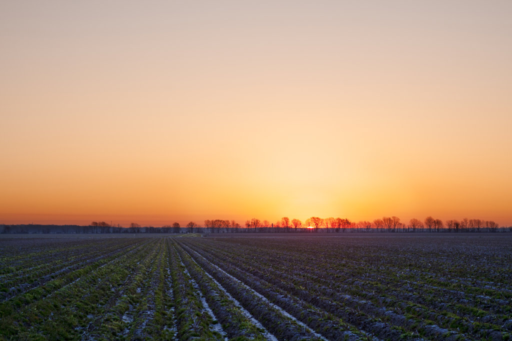 Stock Photo: 4116-784 Sunset over a field, North Little Rock, Arkansas, USA