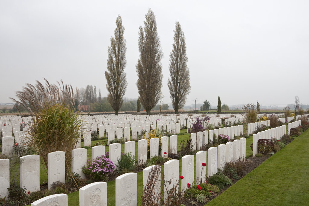 Tombstones in a cemetery, Tyne Cot Commonwealth War Graves Cemetery, Passendale, Zonnebeke, West Flanders, Flemish Region, Belgium : Stock Photo